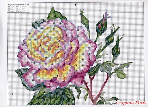 Вышивка крестом схемы с розами 10