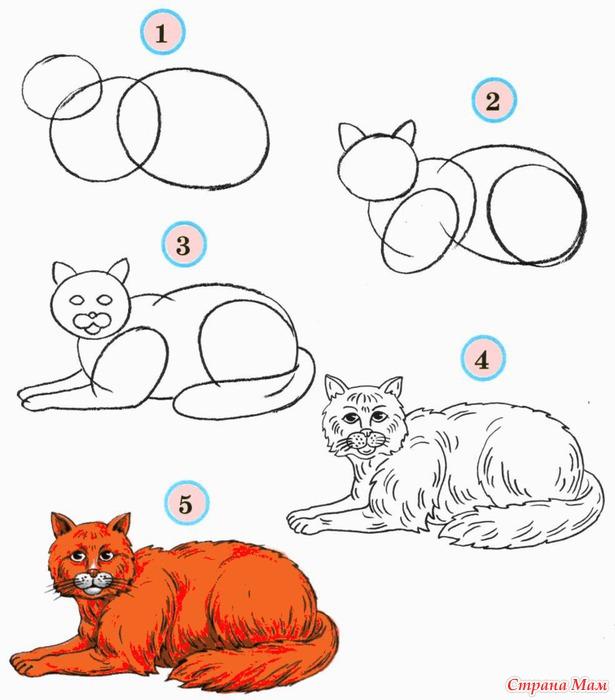 схемы рисования кошек