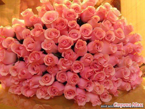 Розовые розы оу оооо страна мам