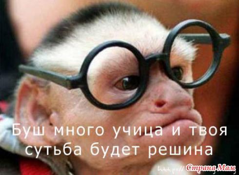 http://www.stranamam.ru/data/cache/2010mar/30/24/202191_31716nothumb500.jpg