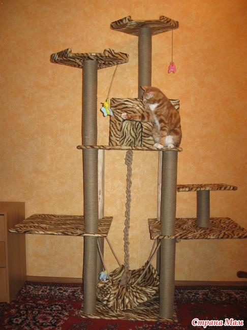 Как сделать для котенка игровой комплекс своими руками