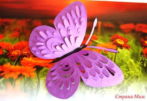 Шаблон Бабочки Для Вырезания Из Бумаги Скачать