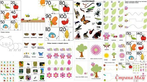 Изучаем насекомых с детьми