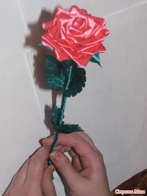 МК розы на ножке