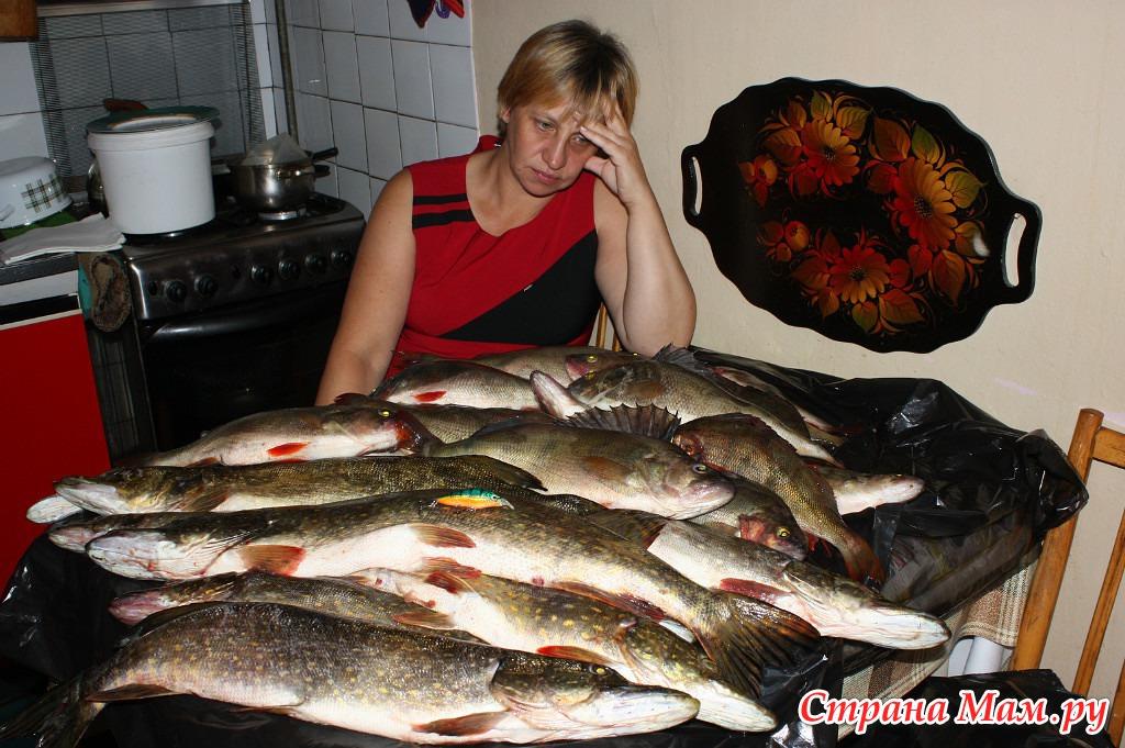стоит ли ехать на рыбалку в сентябре