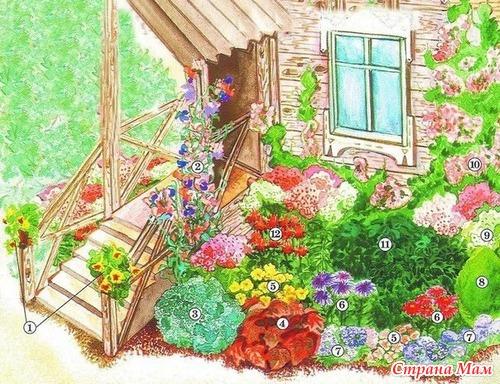 Цветник на все лето