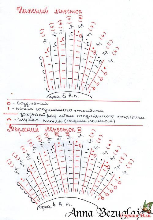 Орхидея МК