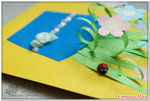 Цветы однолетники семена 65